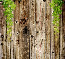Behind A Cosed Door by Christine Lake
