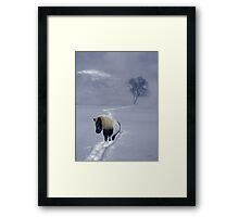 The Mane and the Mountain Framed Print