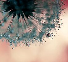 droplets of dusty blue by Ingz