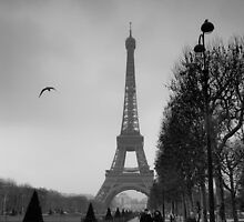 Couple, Bird and Eiffel Tower by Witold Skrzypiński