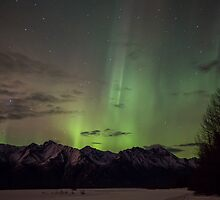 Lady Aurora Shines Through by Rick & Deb Larson