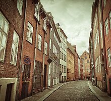 Cobbled Street in Copenhagen by Witold Skrzypiński