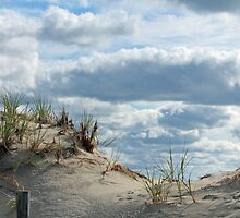 Sand Dune at Lavallette New Jersey  by ericakristen