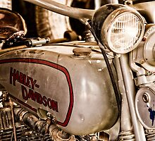 Harley Davidson growing old  by Sandra Johnston