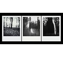 Pinhole - The Wood against The Lights Photographic Print