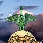 The Liver Bird by Paul Madden