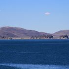 Pyramid Lake, Sutcliffe Nevada USA by Anthony & Nancy  Leake