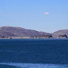Pyramid Lake, Sutcliffe Nevada USA by Anthony & Nancy  Leake