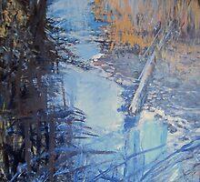 Back Woods Stream by John Fish