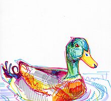 Duck drawing by Gwenn Seemel