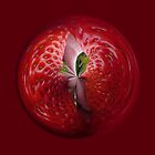 Strawberries from the inside. by Robert Gipson