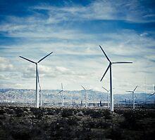 Mojave Desert by mpogorzelski