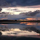 Reflective, Dauphin in The Sky by MaeBelle