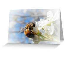 GATHERING POLLEN AND NECTAR Greeting Card