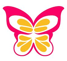 Beautiful colorful Butterfly logo icon by Style-O-Mat