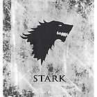 Stark 03 [Phone Case] by Ilcho Trajkovski
