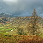 Above Yewdale by VoluntaryRanger
