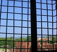 Window in the Castelvecchio by lezvee