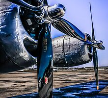 Wright Cyclone R-3350 by chris-csfotobiz