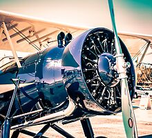 Model 4C by chris-csfotobiz