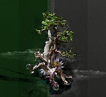 Bonsai design by sdijkshoorn