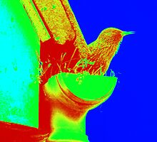 Pop Art Starling. by Livvy Young