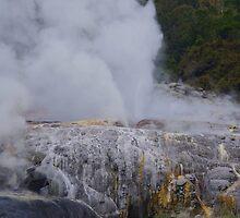Te Puia Geothermal Valley by lezvee