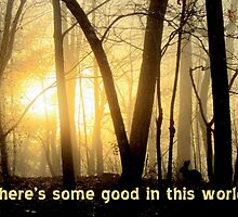 There's Some Good In This World by Jean Gregory  Evans