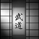 Budo (Martial Arts) - Black and White 01  by soniei