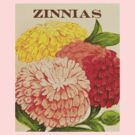 Zinnias by LetThemEatArt