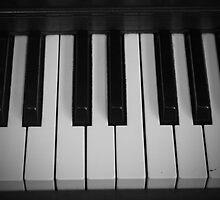 Keys Of Black and White  by gabbycarn
