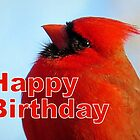 Red Cardinal - Happy Birthday Card by Jean Gregory  Evans