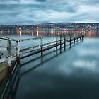 Dunedin Jetty New Zealand by Margaret Metcalfe
