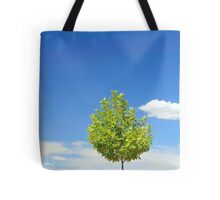 Fine Summer's Day #6 Tote Bag