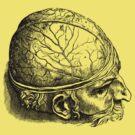Brain Man by Megatrip