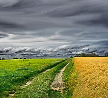 The road not taken by cclaude