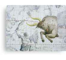 Constellation of Taurus Canvas Print