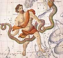 Constellation of Ophiucus and Serpens by Bridgeman Art Library