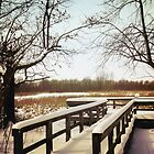Wintertime At Sheldon Marsh - Overlook by MSRowe Art and Design