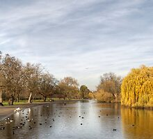 Regents Park in Central London by Chris Day