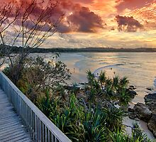 Strawberry Sky Boardwalk by Cheryl Styles