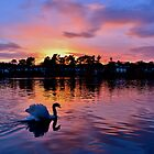 Sunset over Roath Park Lake, Cardiff by Paula J James