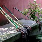 Bamboo Mops by Christina Backus