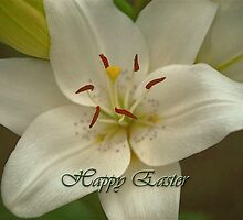 Happy Easter by Dorothy  Pinder