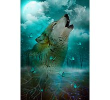 I'll See You In My Dreams (Wolf Howl) Photographic Print