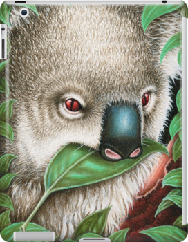 Cute Koala Munching a Leaf by Lorna Mulligan