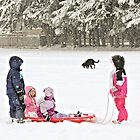 Snow Day Snow Play by Tracy Friesen