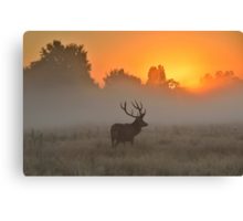 Marvelling at the Rising Sun Canvas Print
