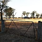 Kurrawyba Road Gate by robpower