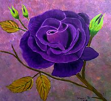 Purple Rose by maggie326